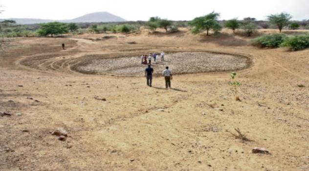 FAO Sequía Kenia
