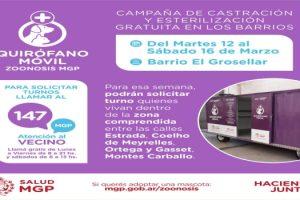 MGP - Quirofanos moviles en El Grosellar